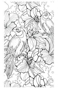 Coloriage adulte difficile perroquets