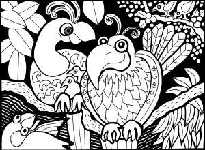 Coloriage deux perroquets 1