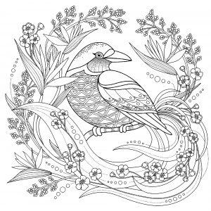 Coloriage oiseau avec elements floraux