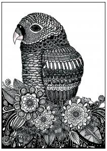 Coloriage perroquet et fleurs