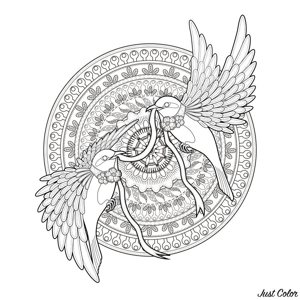Coloriage De Mandala Doiseau.Mandala Deux Hirondelles Et Un Ruban Oiseaux Coloriages