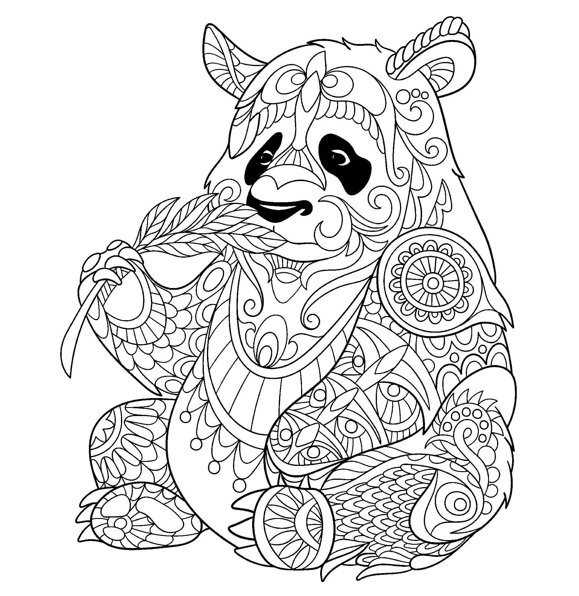 Panda mangeant une pousse de bambou pandas coloriages difficiles pour adultes - Coloriage panda roux mandala ...