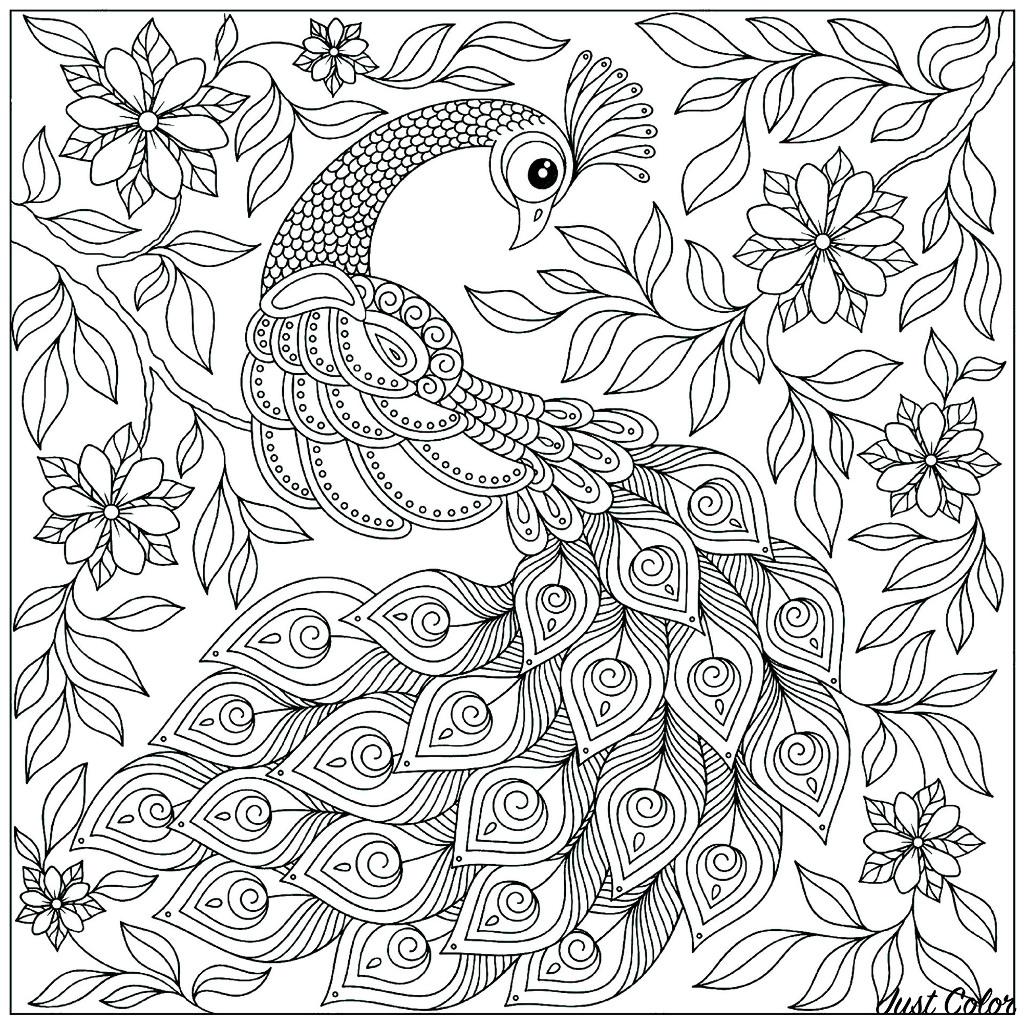 Coloriage d'un paon et son plumage en éventail, avec de nombreuses feuilles et fleurs en fond