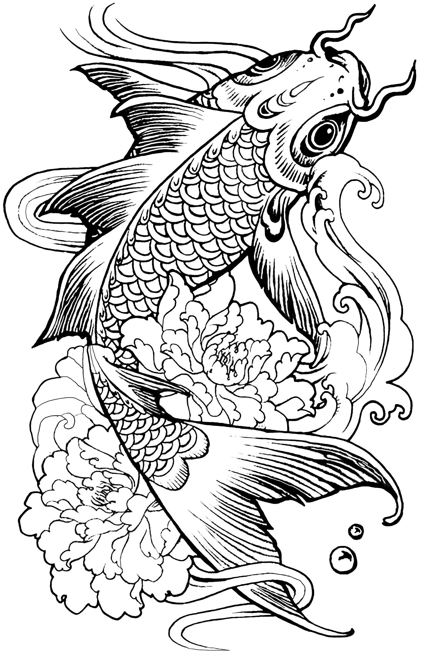 complexe poisson carpe blog   coloriages difficiles pour