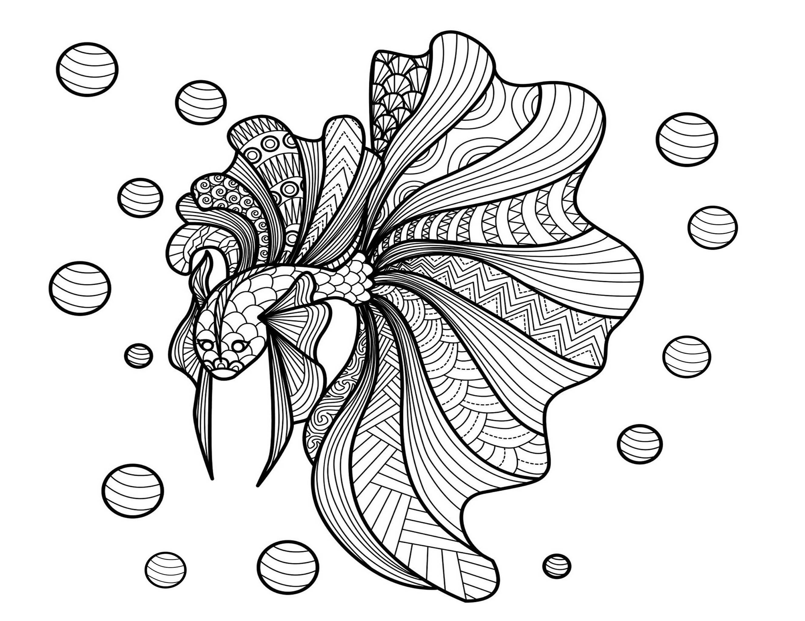 Poisson bimdeedee poissons coloriages difficiles pour - Image de poisson a imprimer ...
