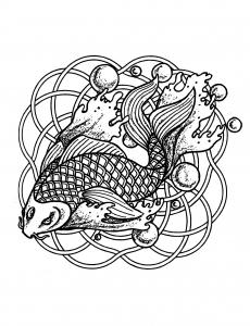 Coloriage poisson et bulles