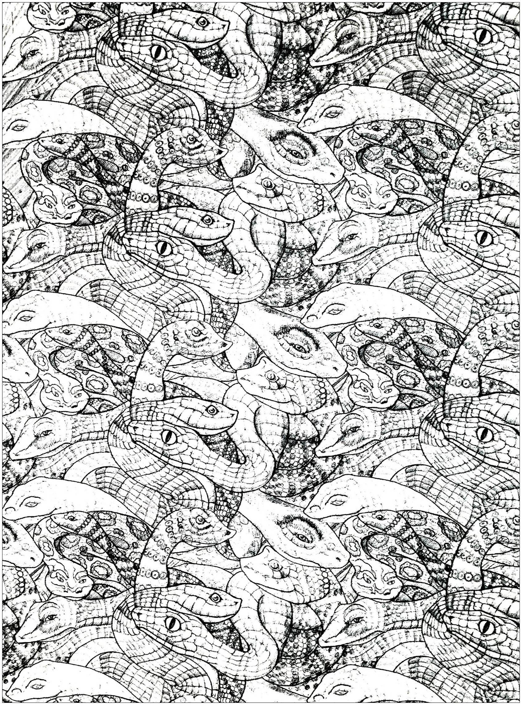 Nombreux serpents entremêlés à colorier - modèle 2 (niveau très difficile !)