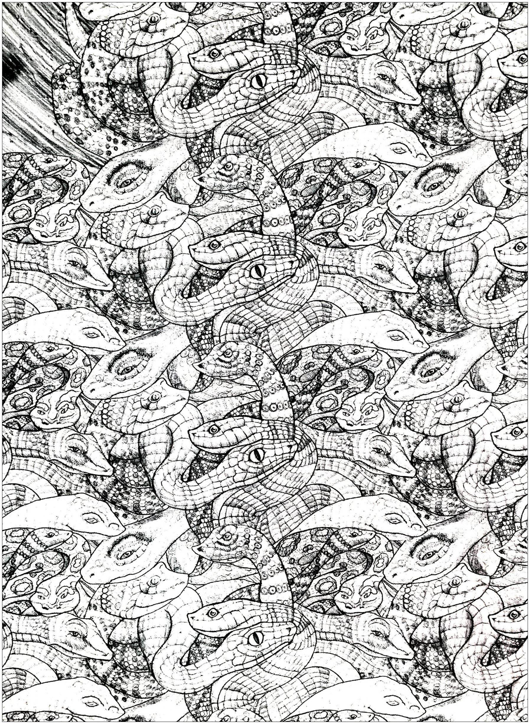 Nombreux serpents entremêlés à colorier (niveau très difficile !)