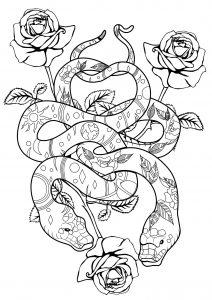 Coloriage serpents et roses