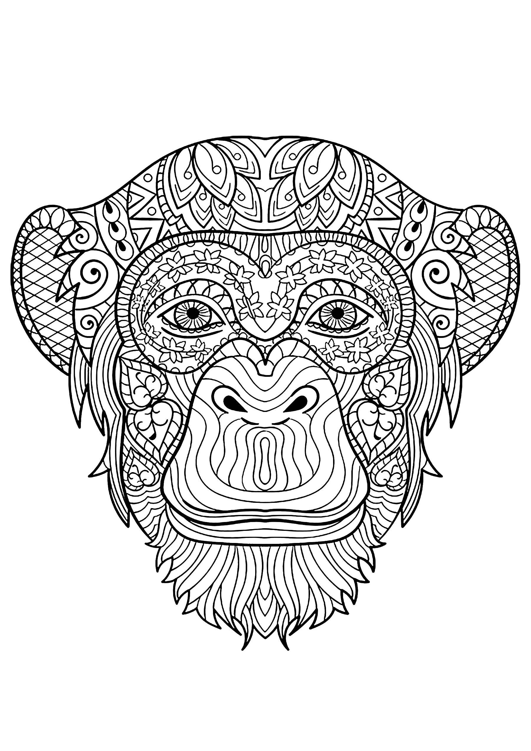 Jolie tête de singe à coloriage avec de beaux motifs