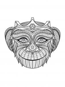 Coloriage adulte tete de singe