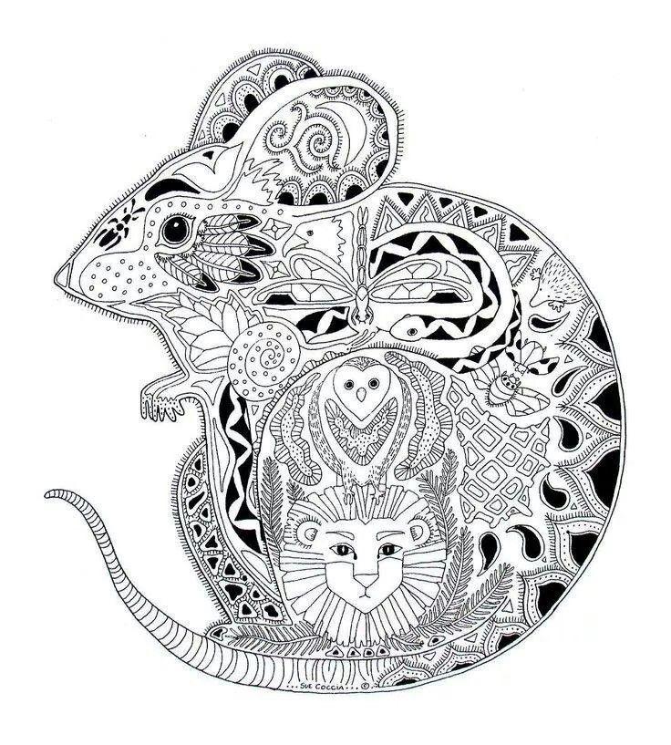 Animaux souris souris coloriages difficiles pour adultes - Dessin de petite souris ...