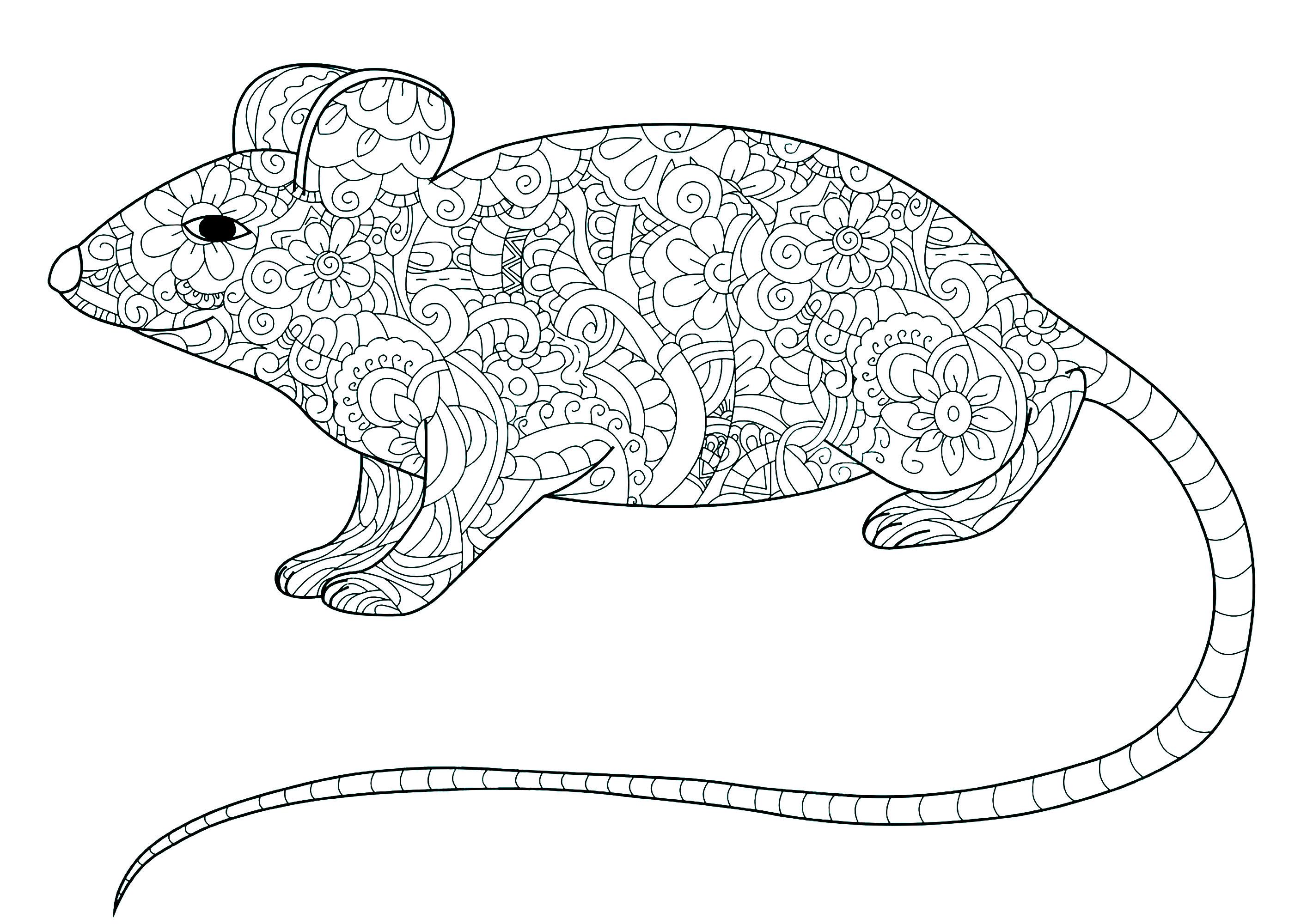 Petite souris remplie de motifs souris coloriages difficiles pour adultes - Dessin petite souris ...