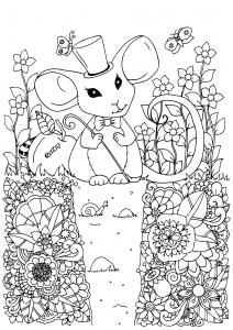 La souris magicienne