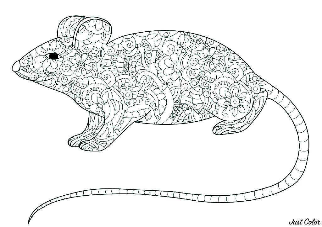 Coloriage d'une souris à la longue queue et au corps plein de motifs fleuris