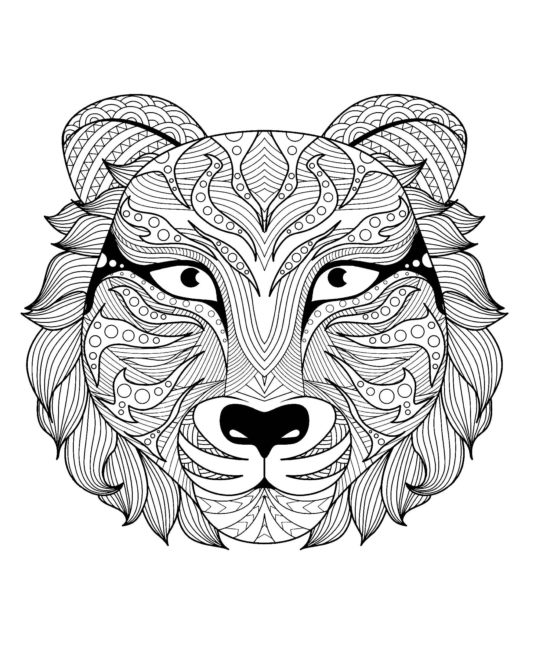 Magnifique tete de tigre tigres coloriages difficiles pour adultes - Coloriage magnifique ...