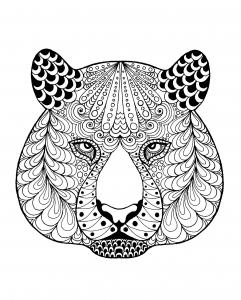 Coloriage tete de tigre et motifs