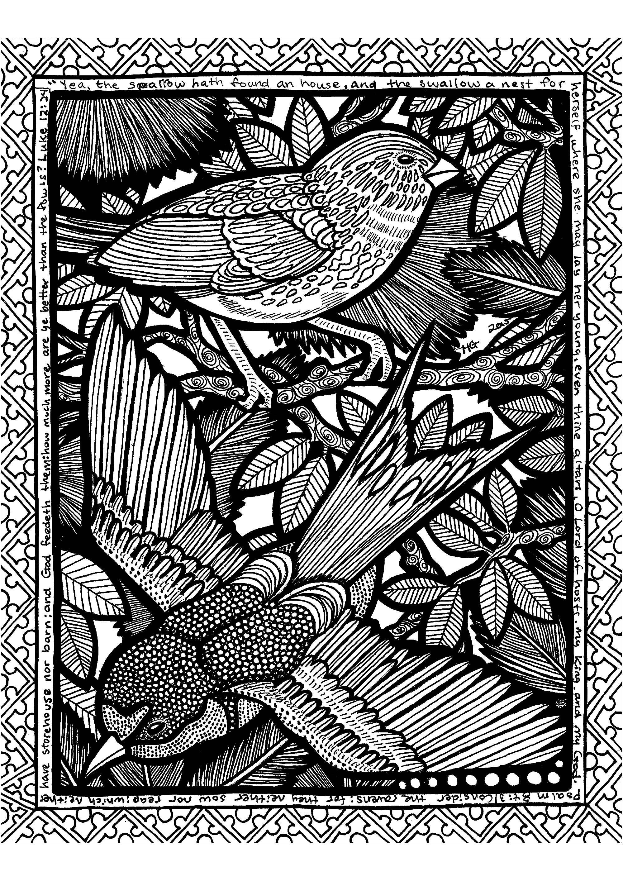Volez au milieu d'un monde Zentangle avec ces beaux oiseaux!