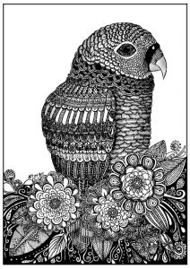 Coloriage adulte zentangle oiseau sabrina