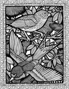 La ligne des oiseaux