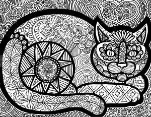 Les lignes du chat