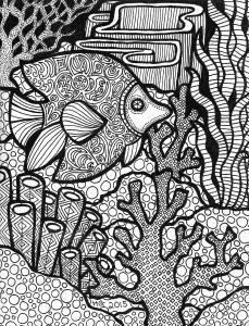 Les lignes du récif