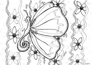 Coloriage adulte papillon par zenfeerie