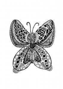 coloriage adulte papillon zentangle celine