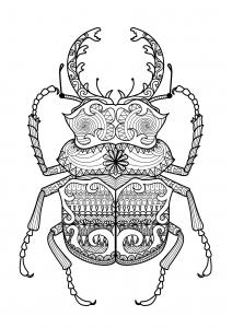 Coloriage adulte zentangle scarabee par bimdeedee