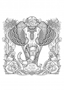 Coloriage adultes zentangle elephant