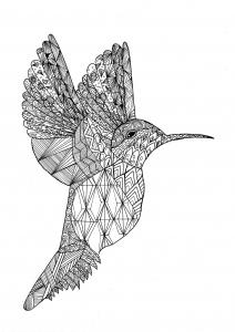 Coloriage colibri par chloe