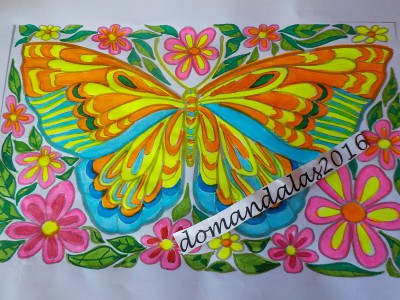 Creation  By : domandalas