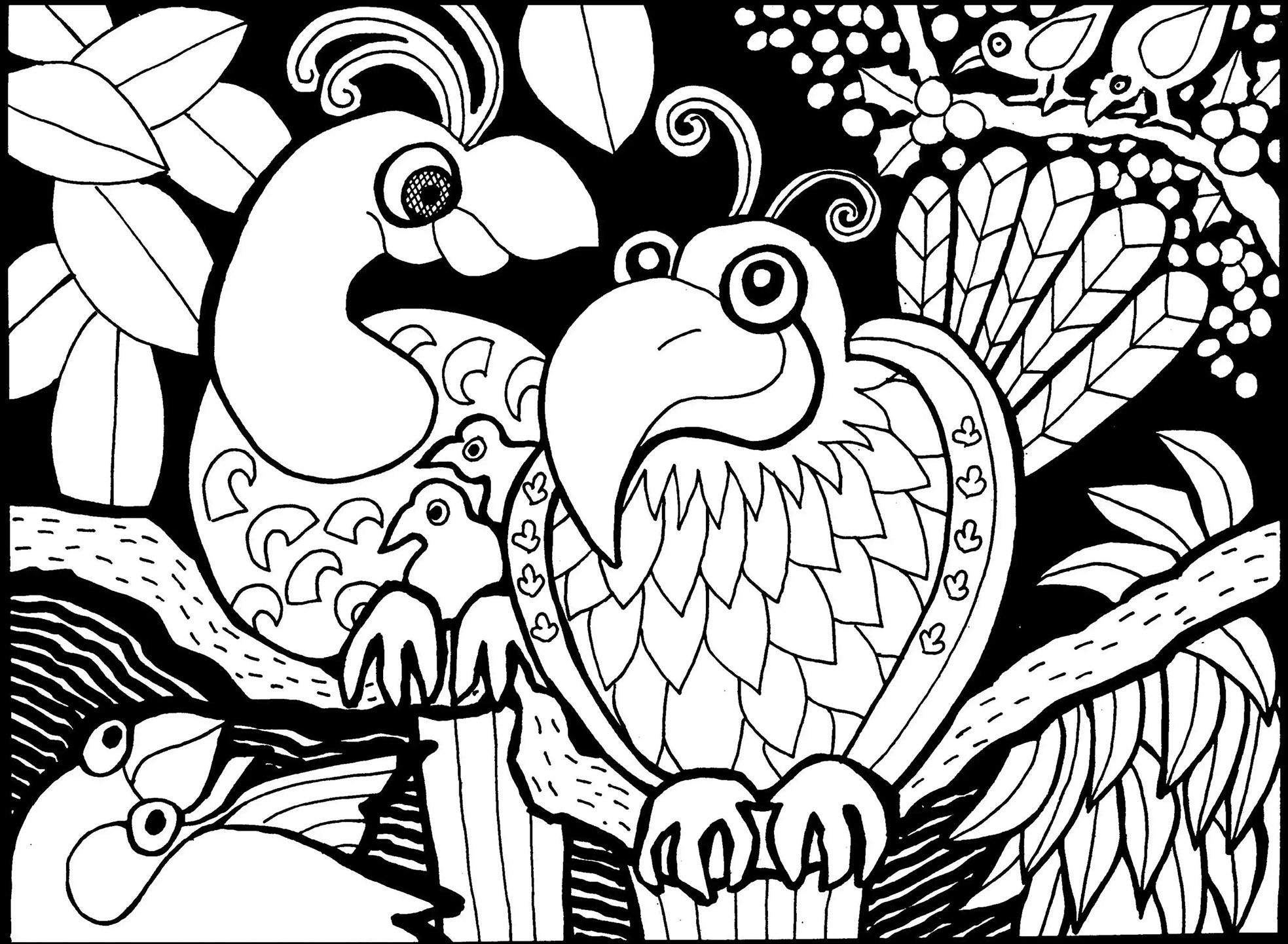 Disegni da colorare per adulti : Uccelli - 5