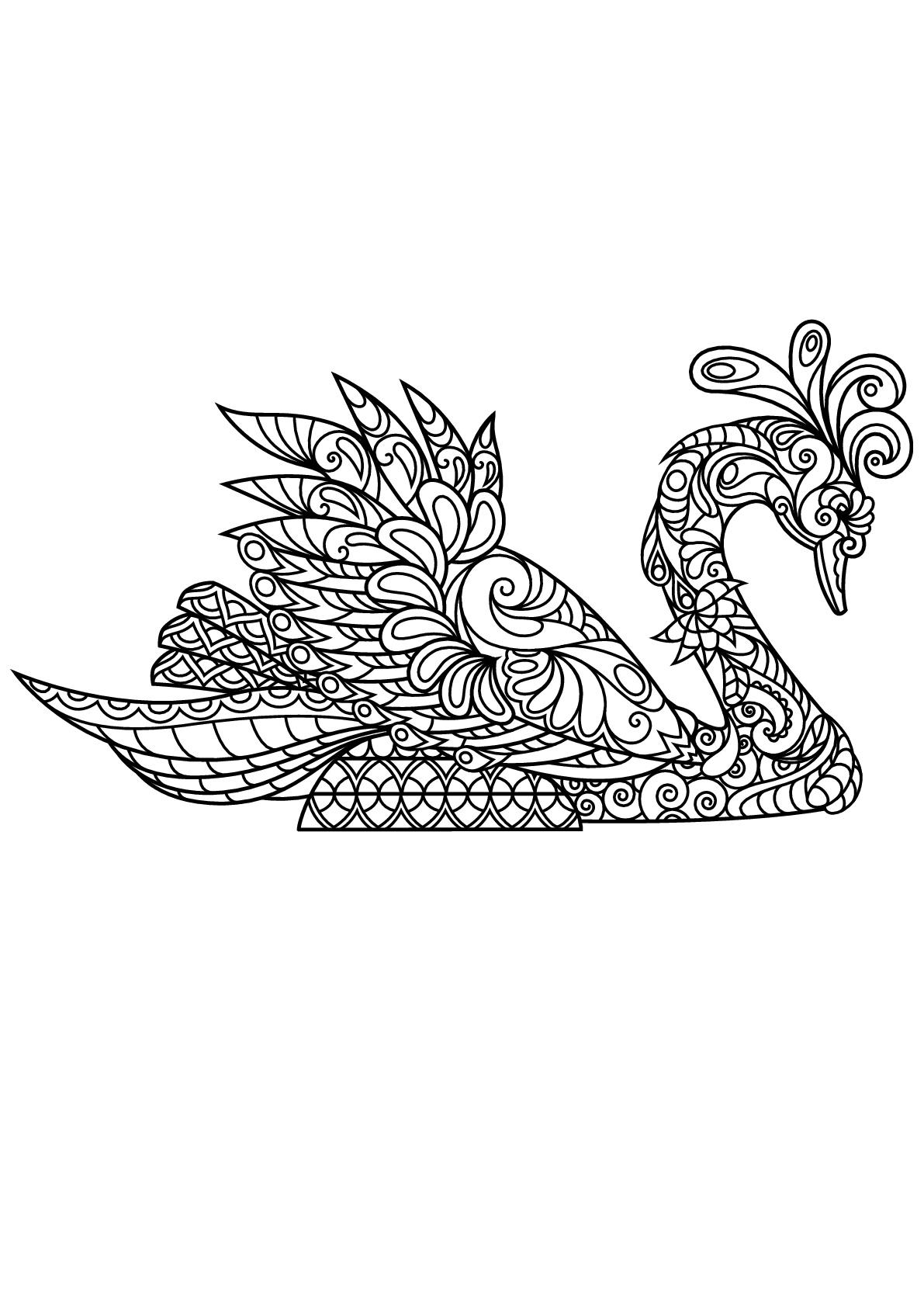 Disegni da colorare per adulti : Uccelli - 22