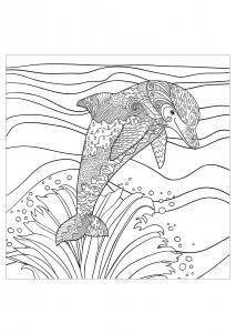 Delfini 18173