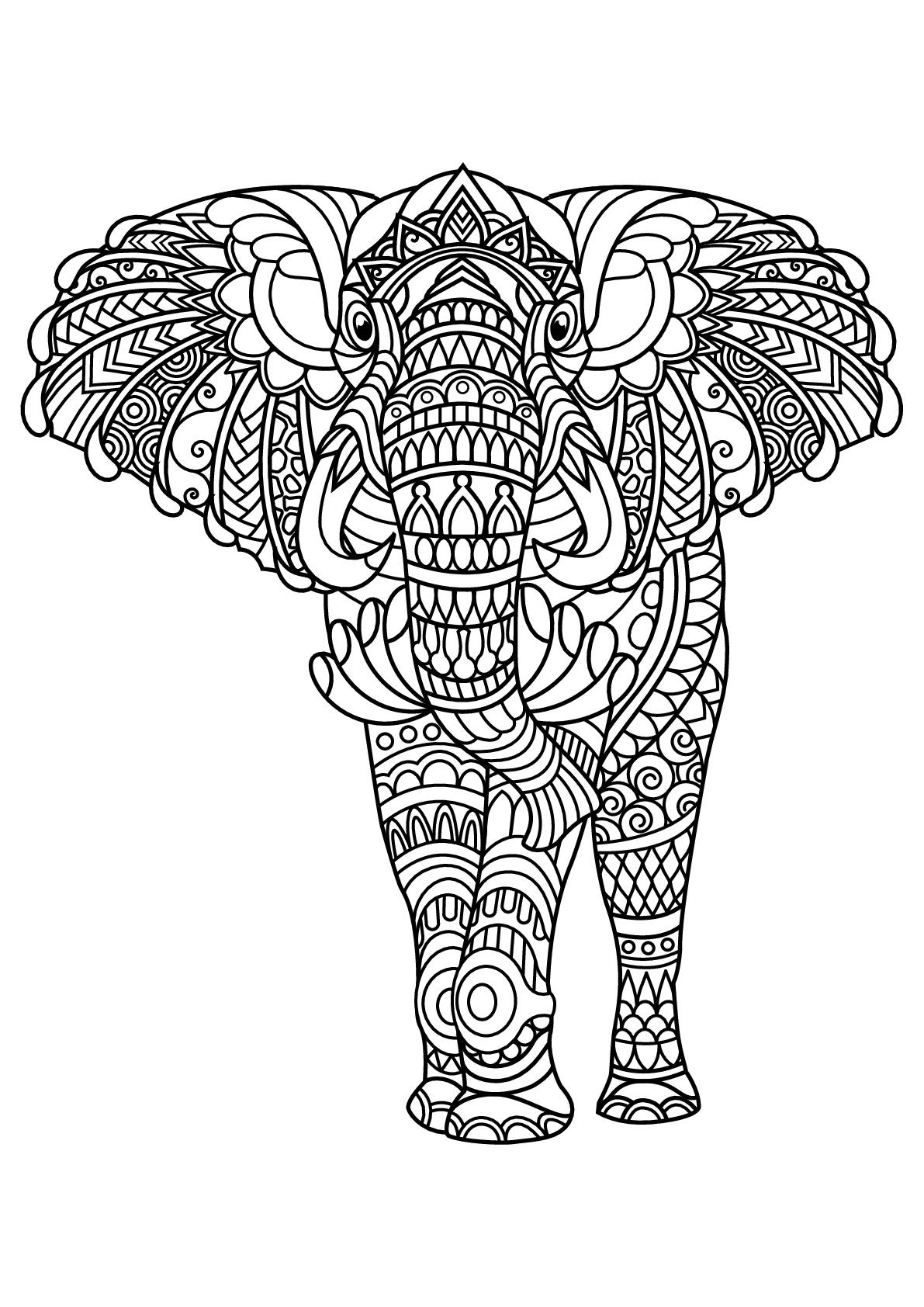 Disegni da colorare per adulti : Elefanti - 2
