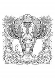 Elefanti 8184