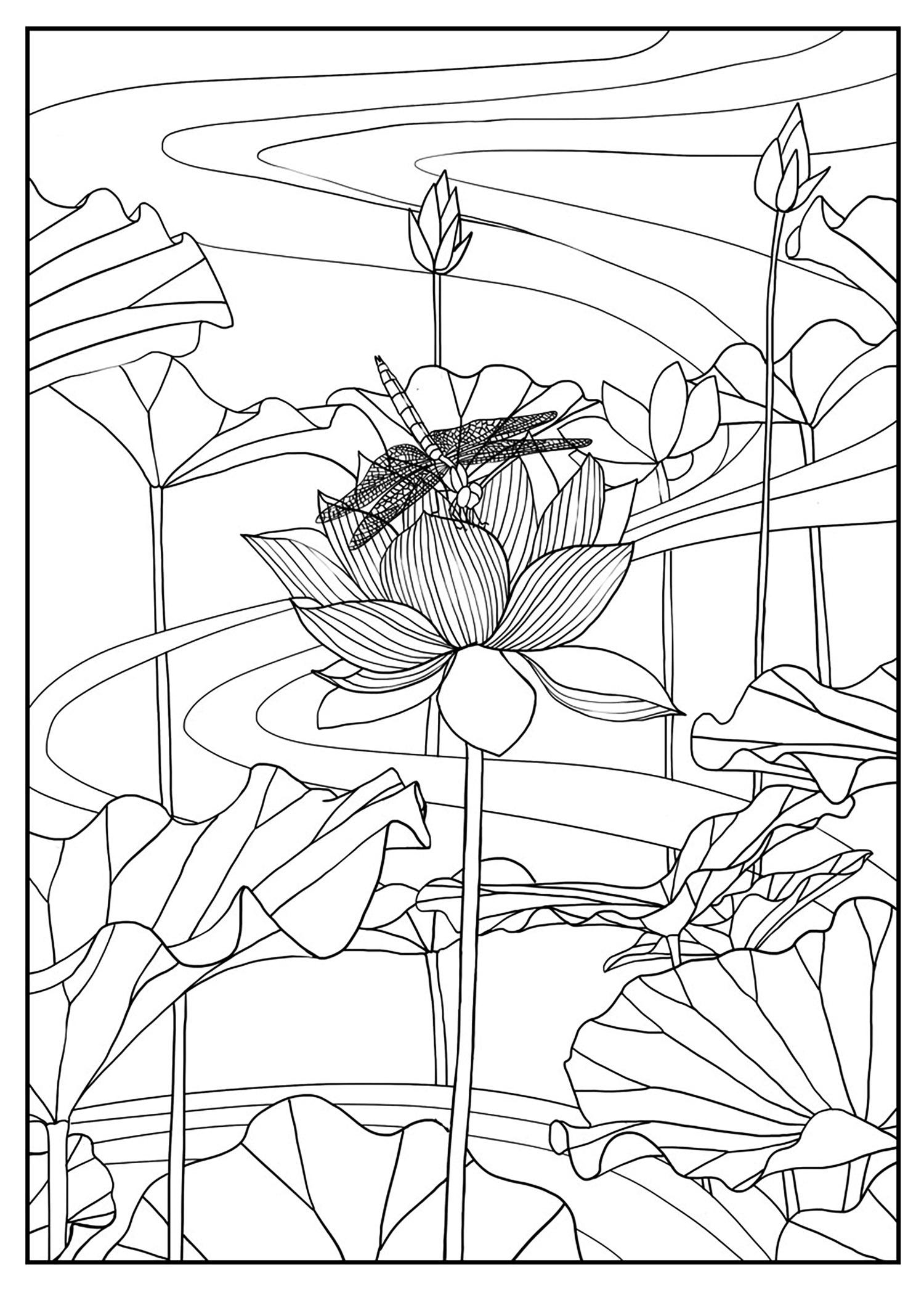 Disegni da colorare per adulti : Fiori e vegetazione - 53