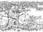 Fiori e vegetazione 43517