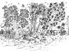 Fiori e vegetazione 69103