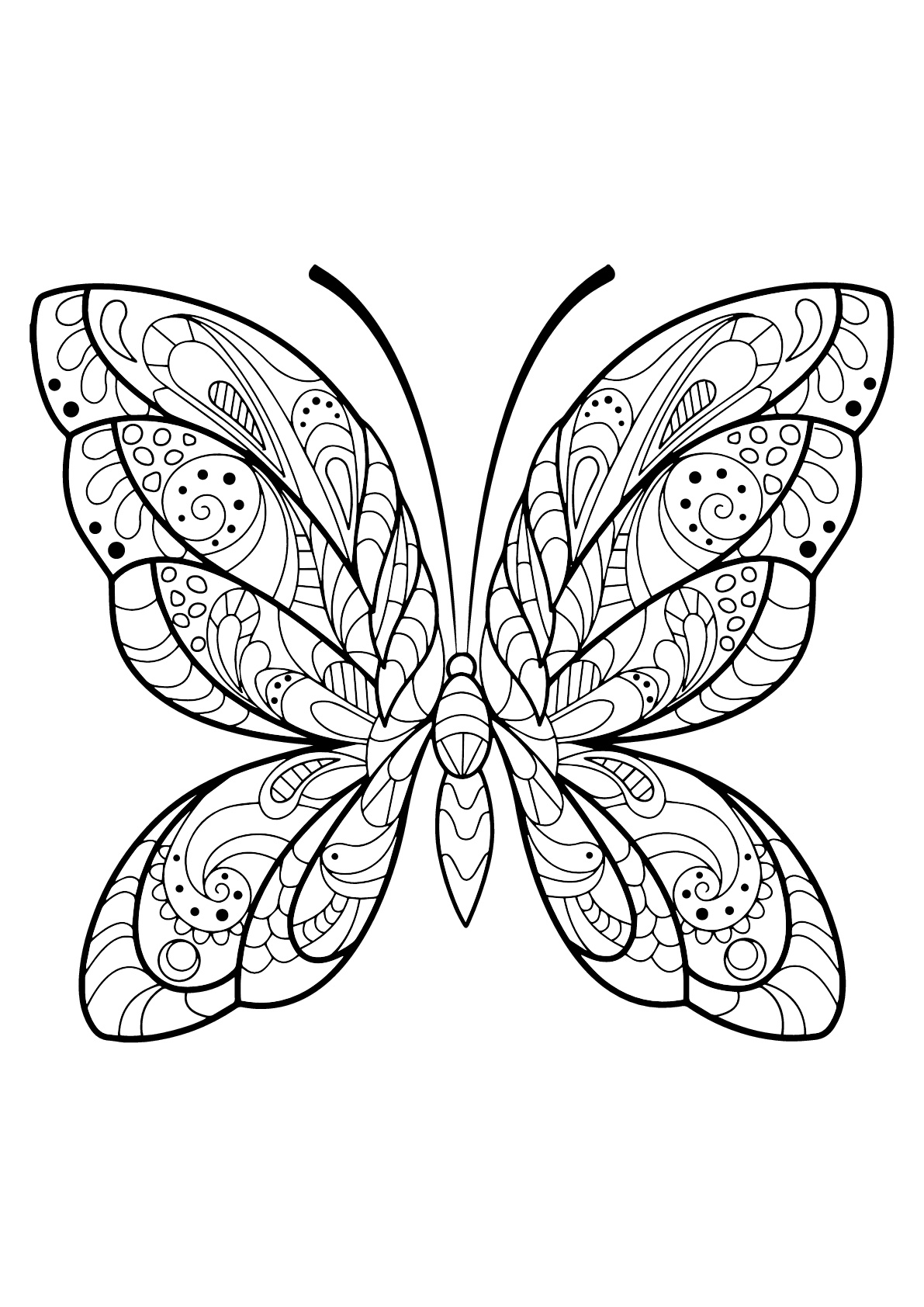 Disegni da colorare per adulti : Insetti - 15