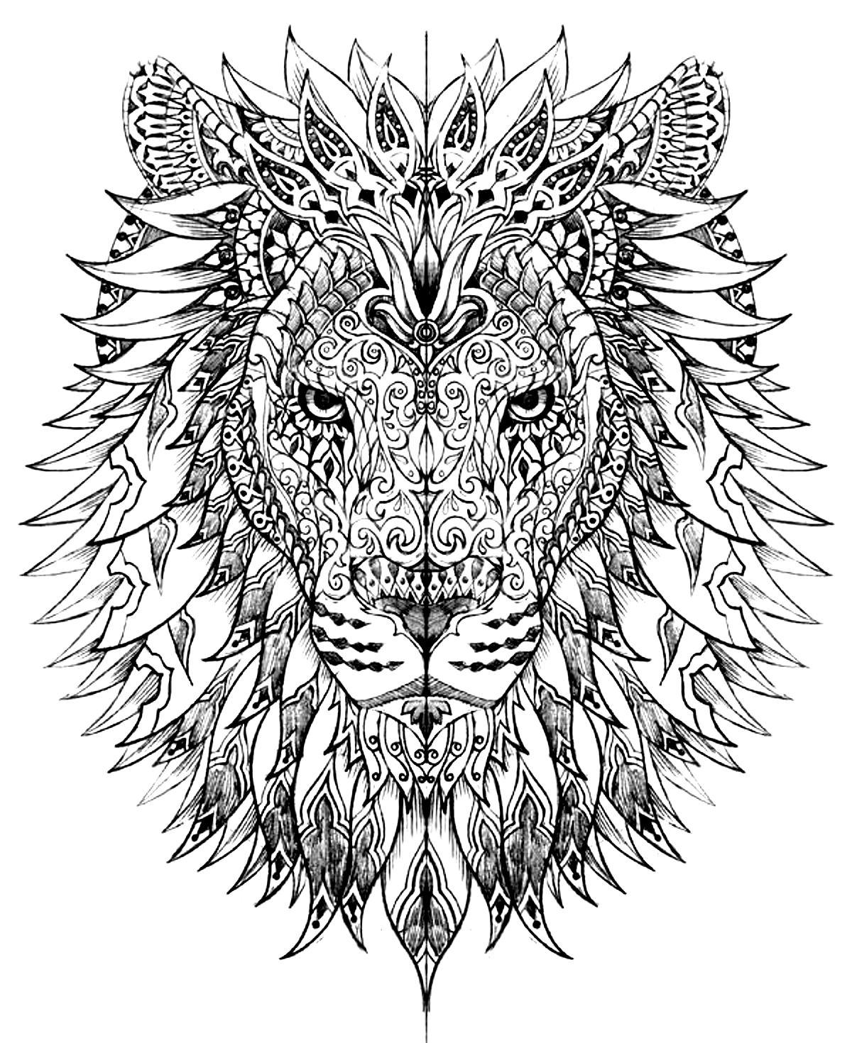 Disegni da colorare per adulti : Lions - 5