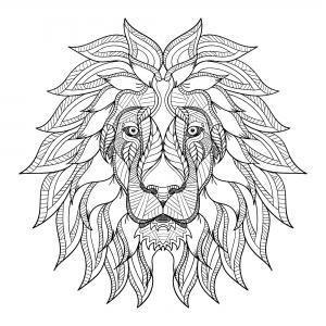 Lions 12630
