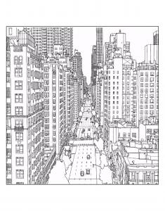 New york 18024