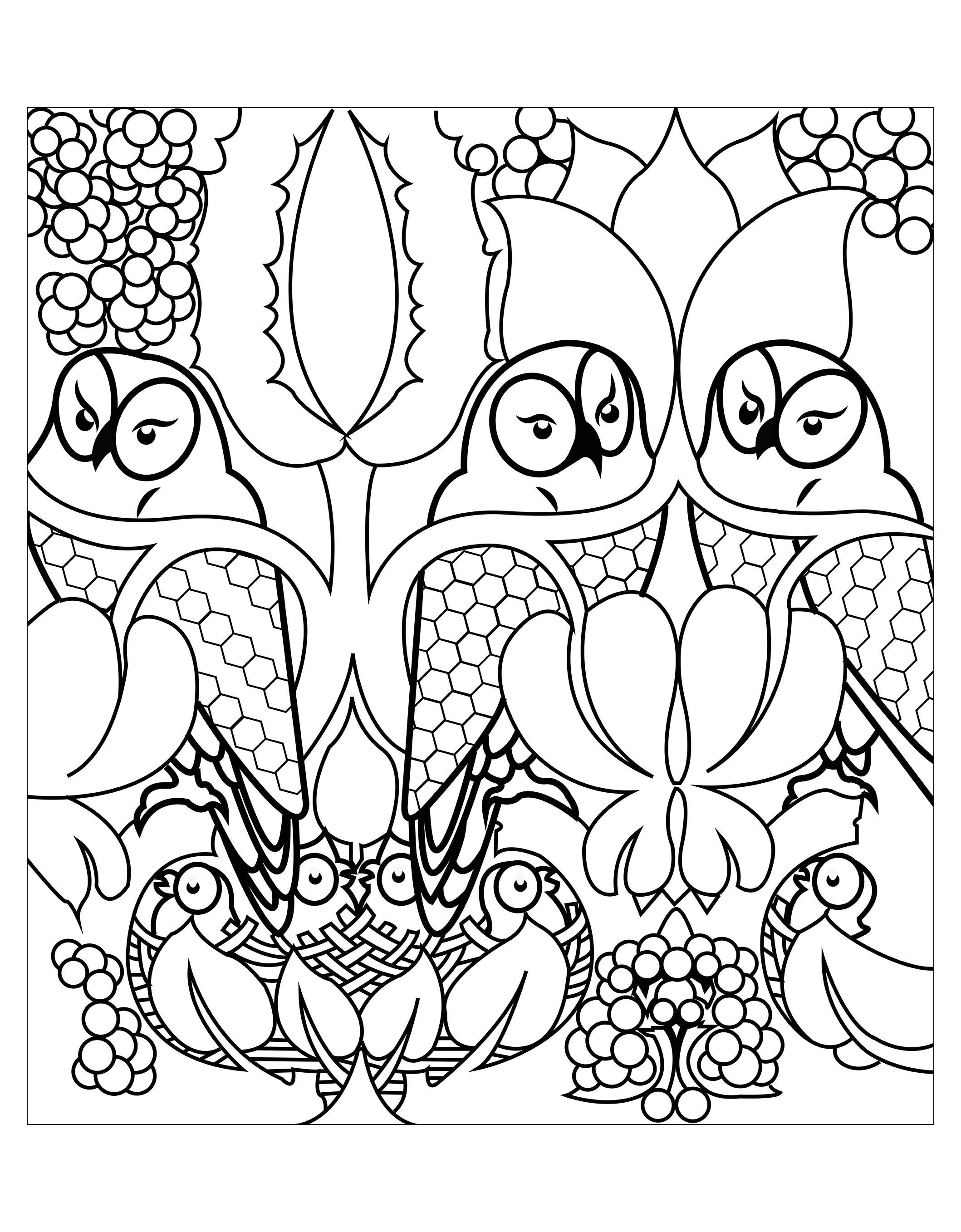 Disegni da colorare per adulti : Gufi - 1