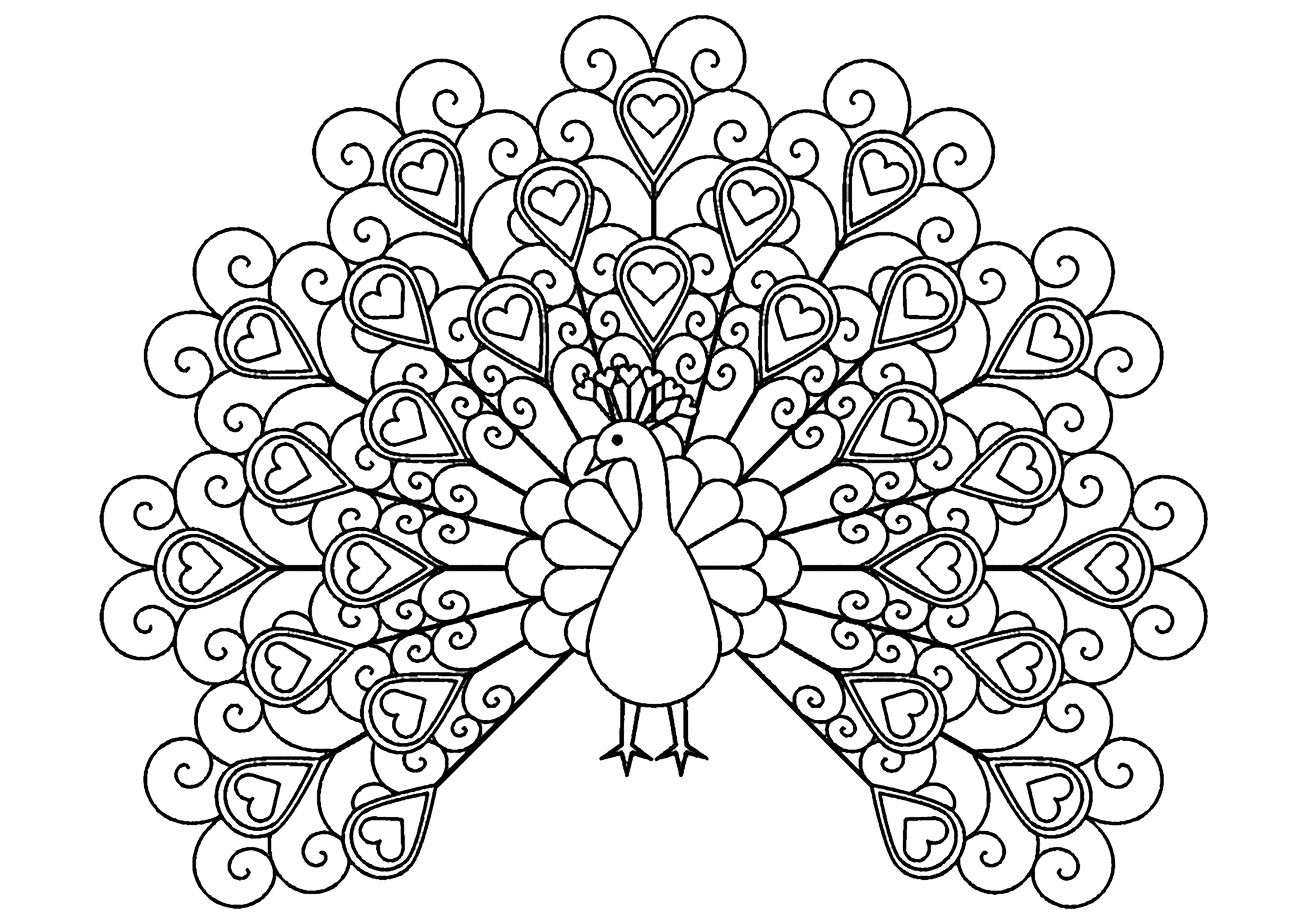 Disegni da Colorare per Adulti : Peacocks - 2