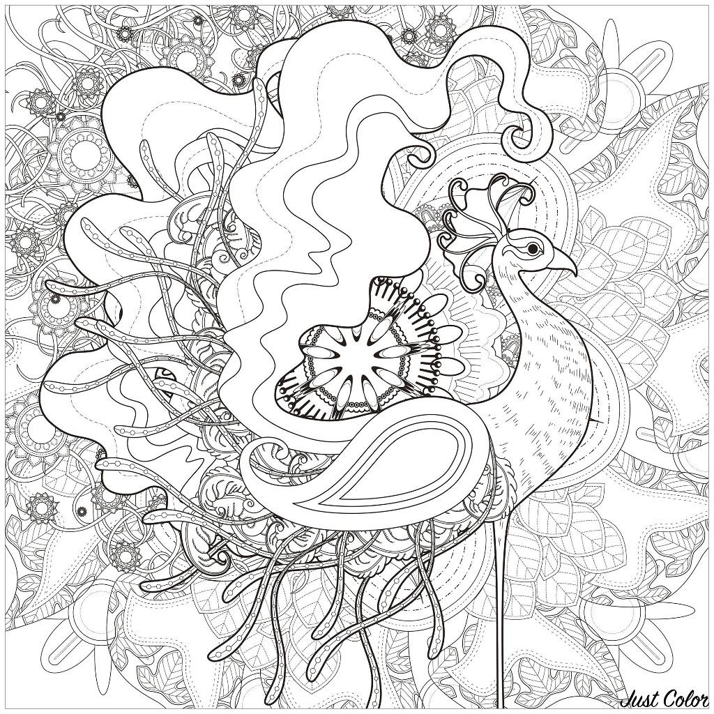 Disegni da Colorare per Adulti : Peacocks - 3