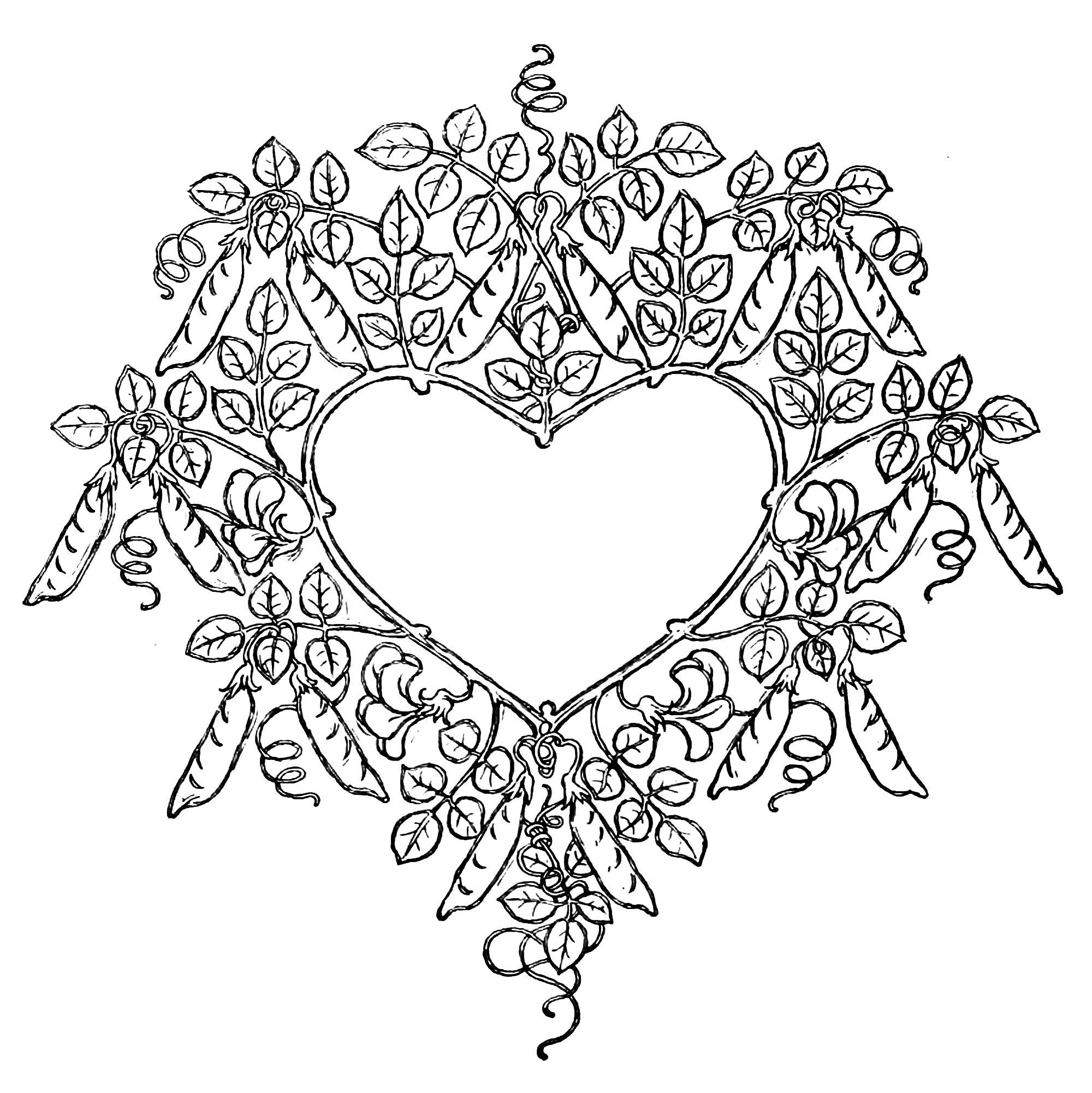 San Valentino 11213 San Valentino Disegni Da Colorare Per Adulti