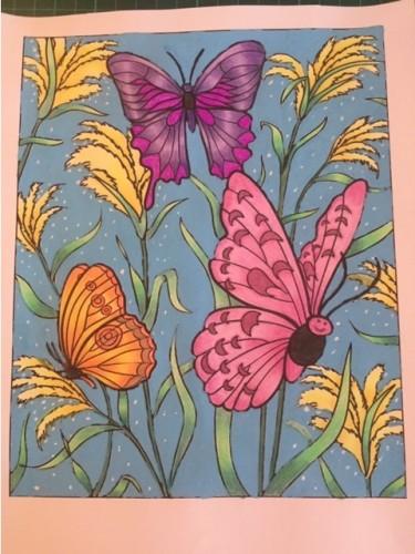 farfalle-e-insetti