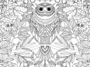 Adult Coloring Pages for Kids